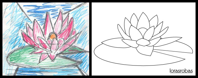 water lily 4